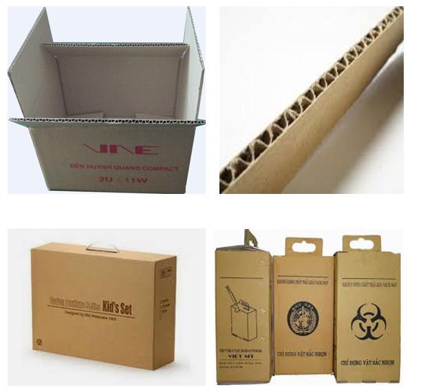Bao bì giấy dạng thùng carton.